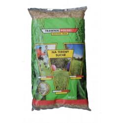 Trawa odporna na susze Trawnik Polski 0,9 kg